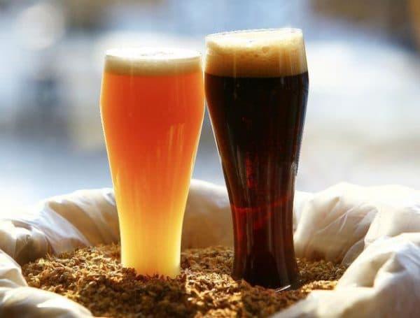 tyomnoe i svetloe pivo